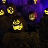 Wicked Pumpkin Hollow 2017 jack o lanterns 2