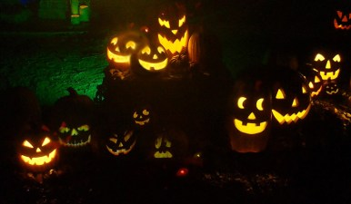 Van Nuys Yard Haunts House of Boos 2018 Jack O'Lanterns