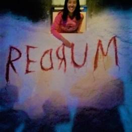 I Like Scary Movies Shining