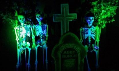 Best Halloween Store Ever