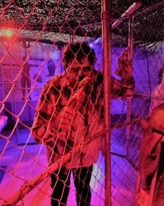 LA Count Fair Zombie Escape Review