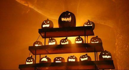 Haunted Hayride Halloween