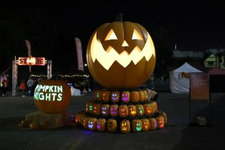 Pumpkin Nights 2019 Halloween review