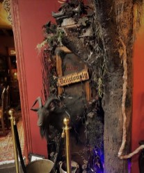 Bearded Lady's Mystic Museum_22