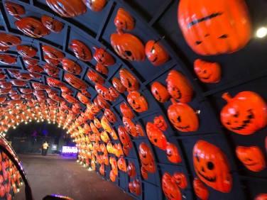 Drive-through Halloween Decorations