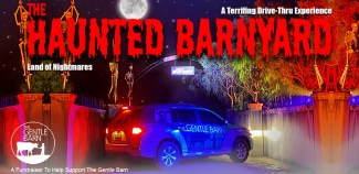 Haunted Barnyard