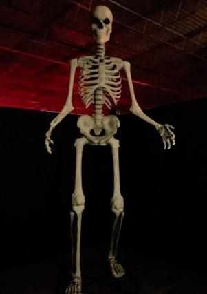 HorrorWorld Chainsaw Massacre skeleton1