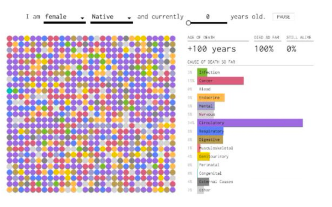 How You'll Probably Die, Visualized