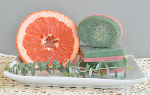 Grapefruit Eucalyptus Soap Bars Recipe | The Natural Beauty Workshop