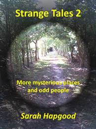 Cover of Sarah Hapgood's Strange Tales 2