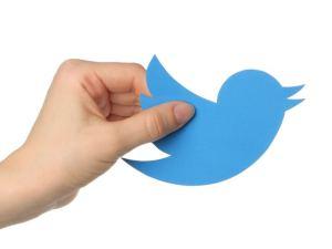Twitter(ツイッター)の最新の情報と傾向