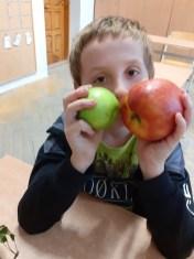 jablko (21)