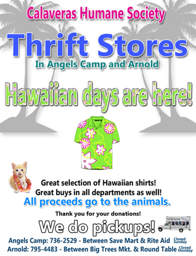Hawaiian Days Are Here At The CHS Thrift Stores In Angels Camp & Arnold