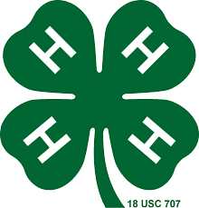 Murphys 4-H Christmas Tree Lot To Return Again Next Year