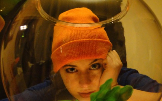 FRINGE REVIEW: Pet Fish Are Made For . . .