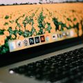 5 Best Fixes for Force Quit Not Working on Mac
