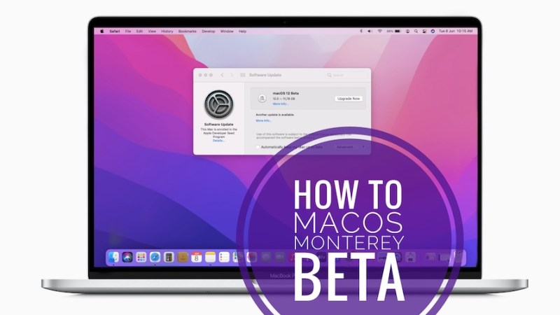 how to download macos monterey developer beta on any mac