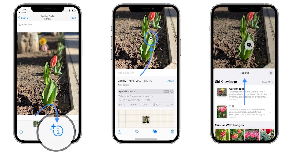 how to search visually on iphone