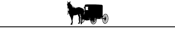 Amish Buggy Ride Quelle: https://mulberrylanefarmwi.blogspot.de