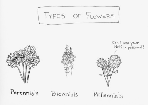 Types of flowers by Ted McCagg