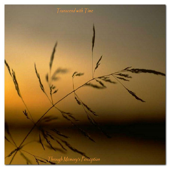 trancend-2