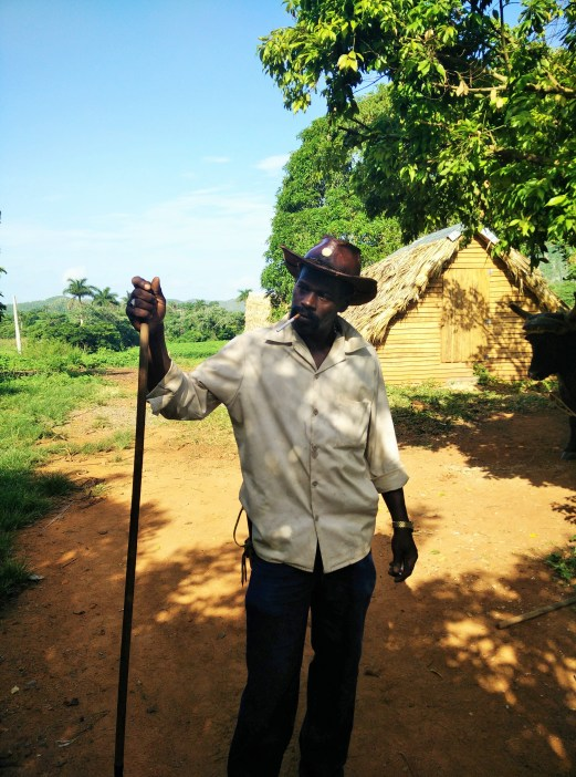 A farmer in Vinales