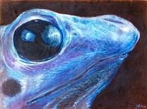 blue frog/Prisma