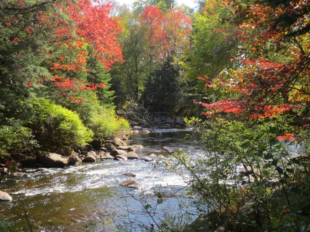 Newark FUMC Adirondack River #5 photo by Nancy Schrader