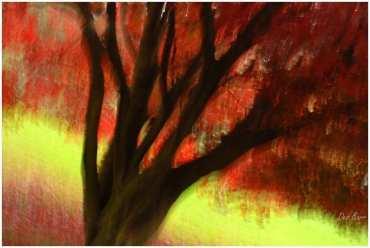 'Autumn Dream' by Des Barr