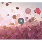 indie artist summit screen
