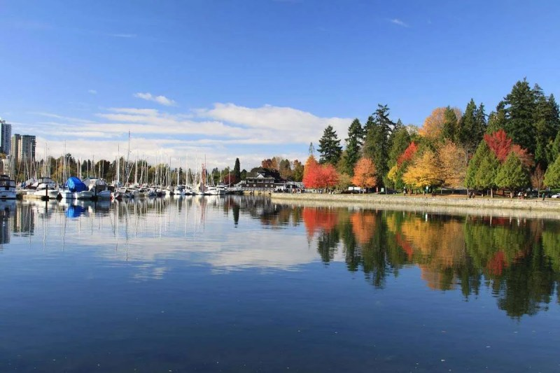 beautiful stanley park in vancouver