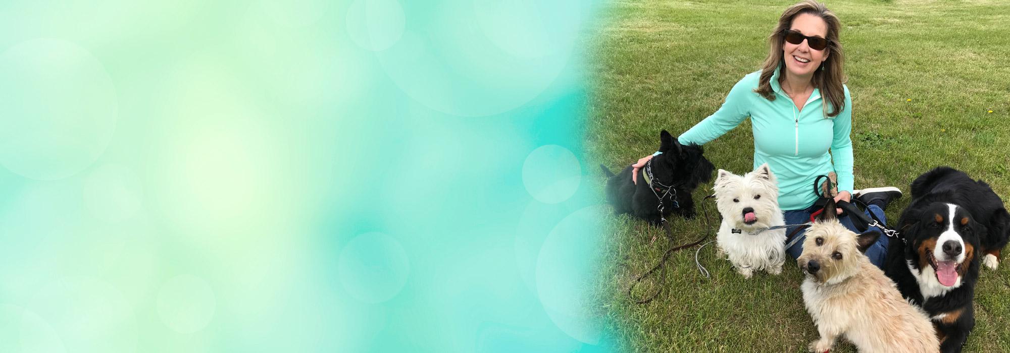 New Beginnings Dog Training