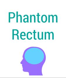 Phantom Rectum