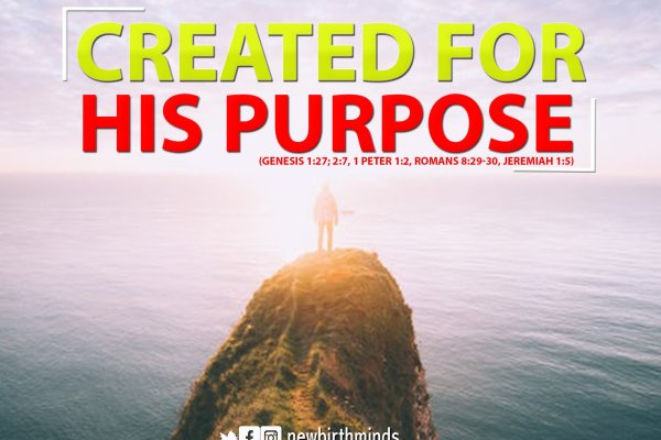 WHO AM I? – CREATED FOR HIS PURPOSE
