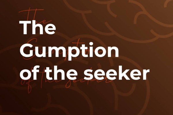 The Gumption of the Seeker – By Onilude Segun