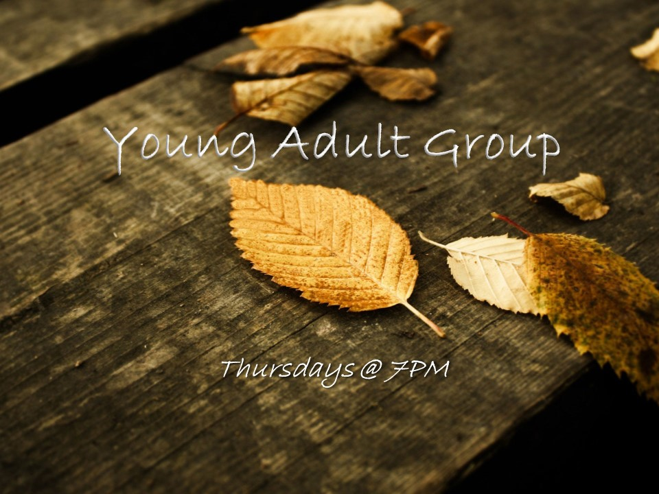 young-adult-group-web-pic