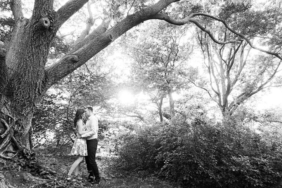Black and White Photos of Couple by a Tree in the Arnold Arboretum