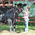 Evie Dudding, in the youngest division, brought her yearling steer and heifers as well as young goats to exhibit.