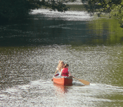 A canoe moves through a tree lined creek.