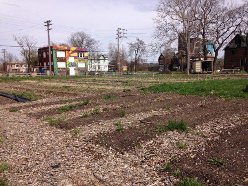Michigan Urban Farming Initiative