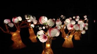 magic_lantern_festival22