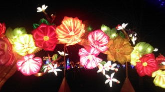 magic_lantern_festival4