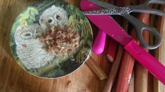 chopped_rhubarb