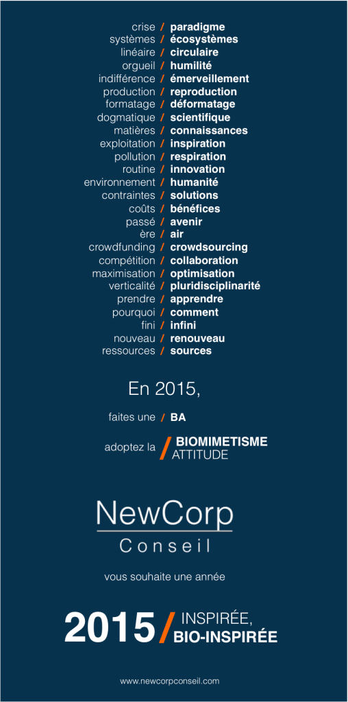 NewCorp Conseil_Voeux 2015