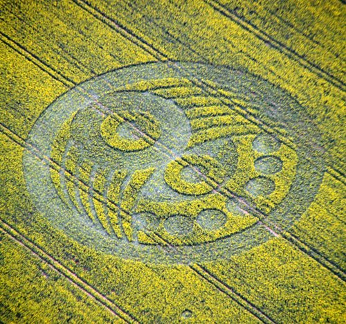 First uk crop circle of the year new crystal mind the first uk crop circle of the year has appeared the so called badger formation on may 5th by old sarum discovered by badger of disclose tv publicscrutiny Choice Image