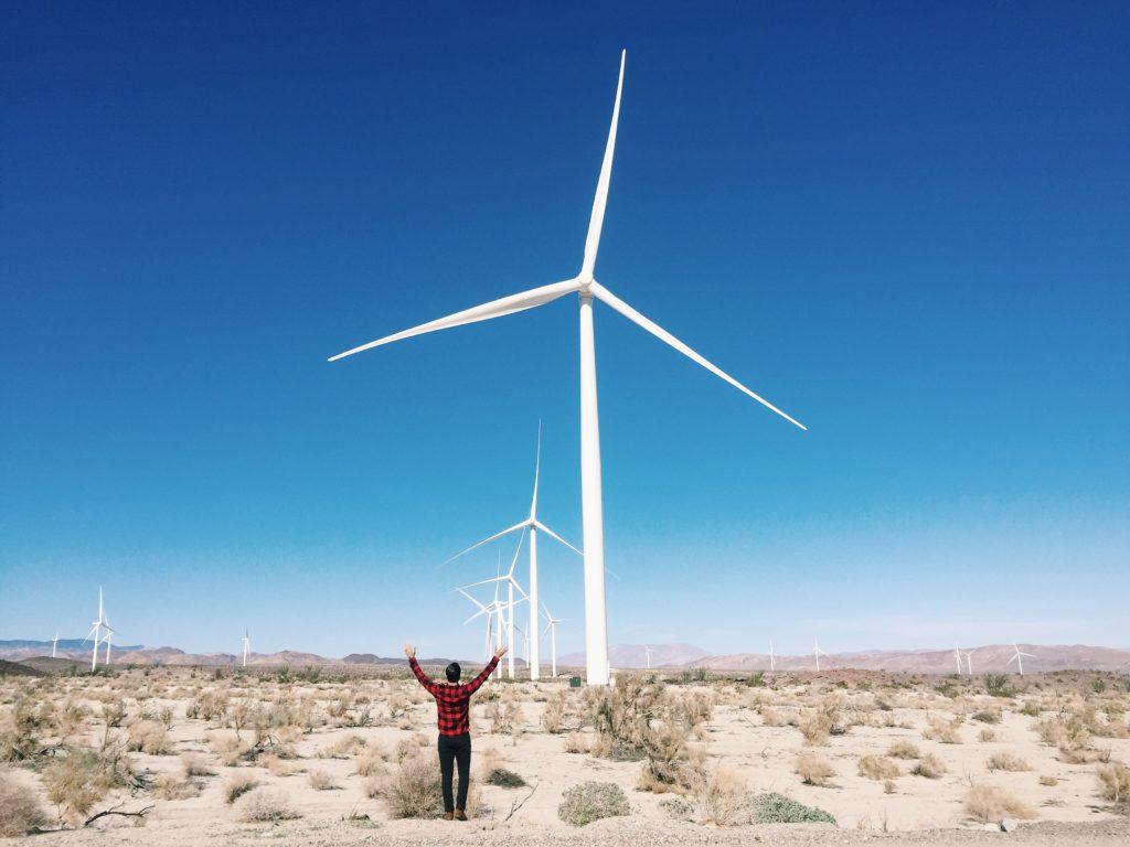 New Darlings-Windmills