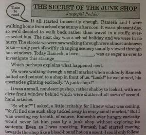The secret of the junk shop