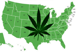 South Carolina Dispensaries Contact Us