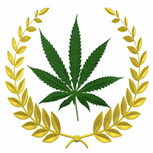 Georgia Dispensaries