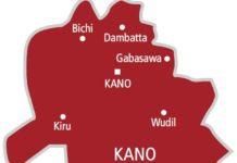 Three Die, 284 In Hospital As Strange Disease Hits Kano